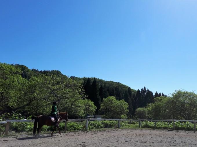 五月晴れなお天気で_e0186499_21054964.jpg