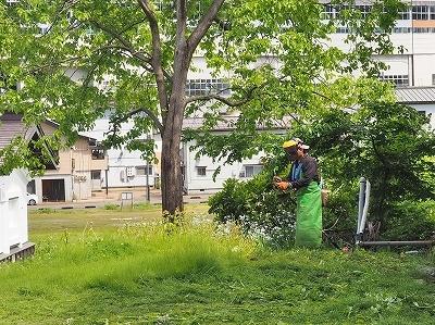 二人の草刈り男_c0336902_20080617.jpg