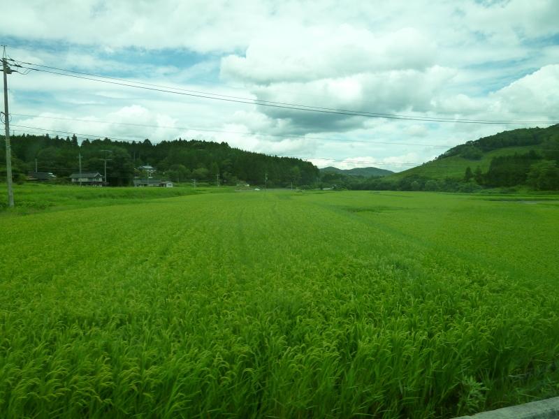 岡山県内遊休農地(耕作放棄地)面積の件で。_c0326333_07510042.jpg