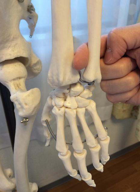 手首が辛い方、骨盤を整えてみませんか? 〜ある日の施術より〜_e0073240_16064424.jpg