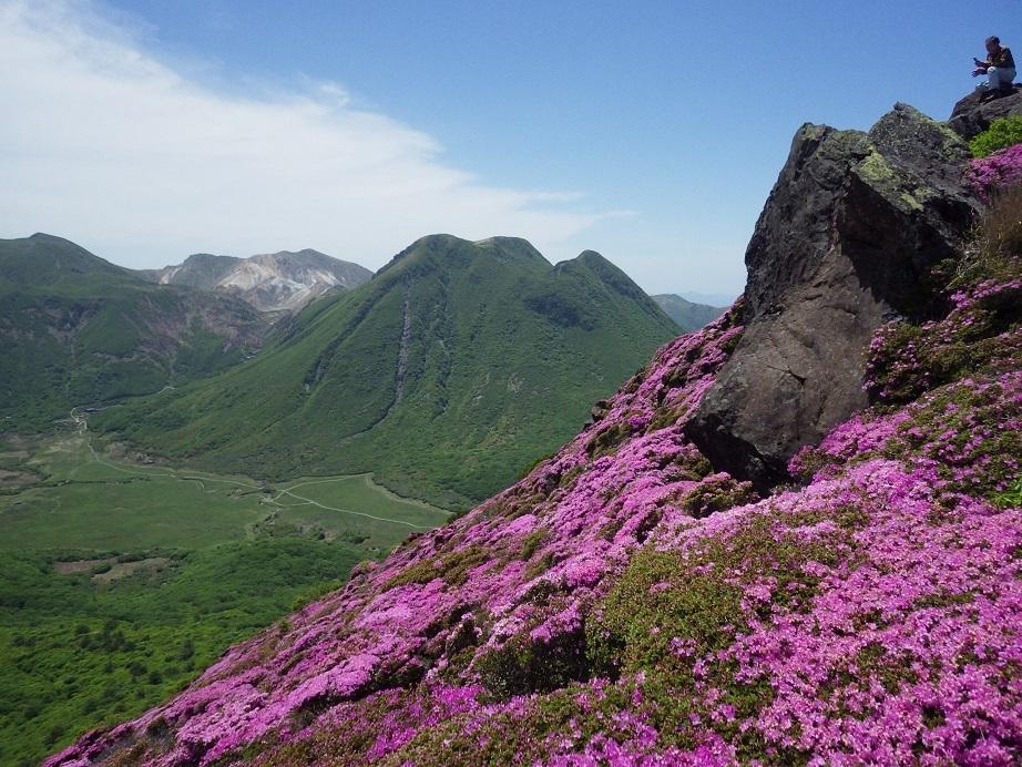 平治岳のミヤマキリシマ_e0164643_20000045.jpg