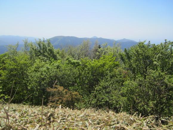 白山神社の御神体山は浮嶽ですか_a0237545_12422952.jpg