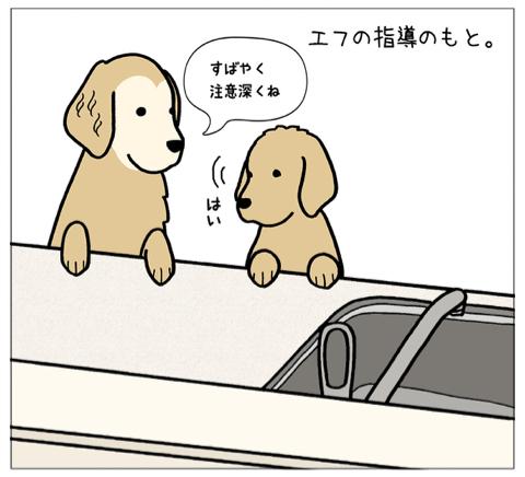 エフ漫画『エフの教え2』_c0033759_16165218.jpg