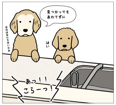 エフ漫画『エフの教え2』_c0033759_16165412.jpg