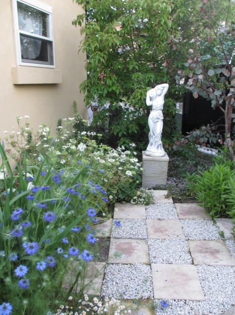 ニゲラが涼し気に咲いています~_a0243064_07245743.jpg