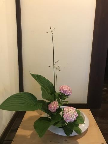 今週のお花_a0080074_21334000.jpeg