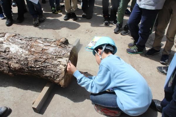 中学生の体験学習「Green School」を行いました。_f0227395_14521512.jpg