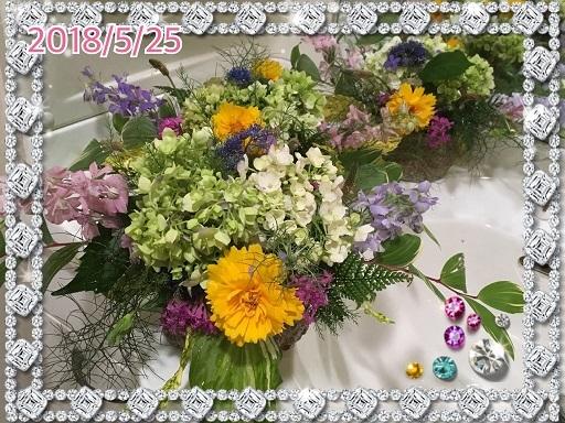 f0162908_22055405.jpg