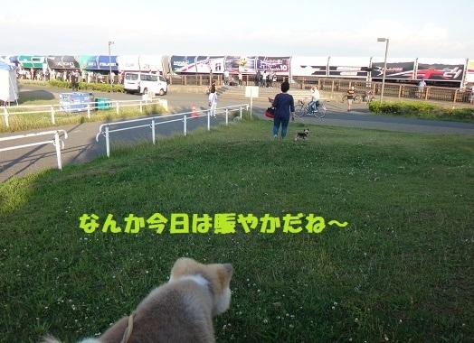 丸刈りペア(^^♪_f0121712_01372379.jpg