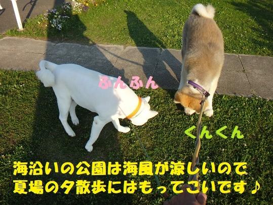 丸刈りペア(^^♪_f0121712_02222244.jpg