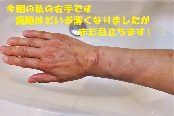 f0121712_22301381.jpg