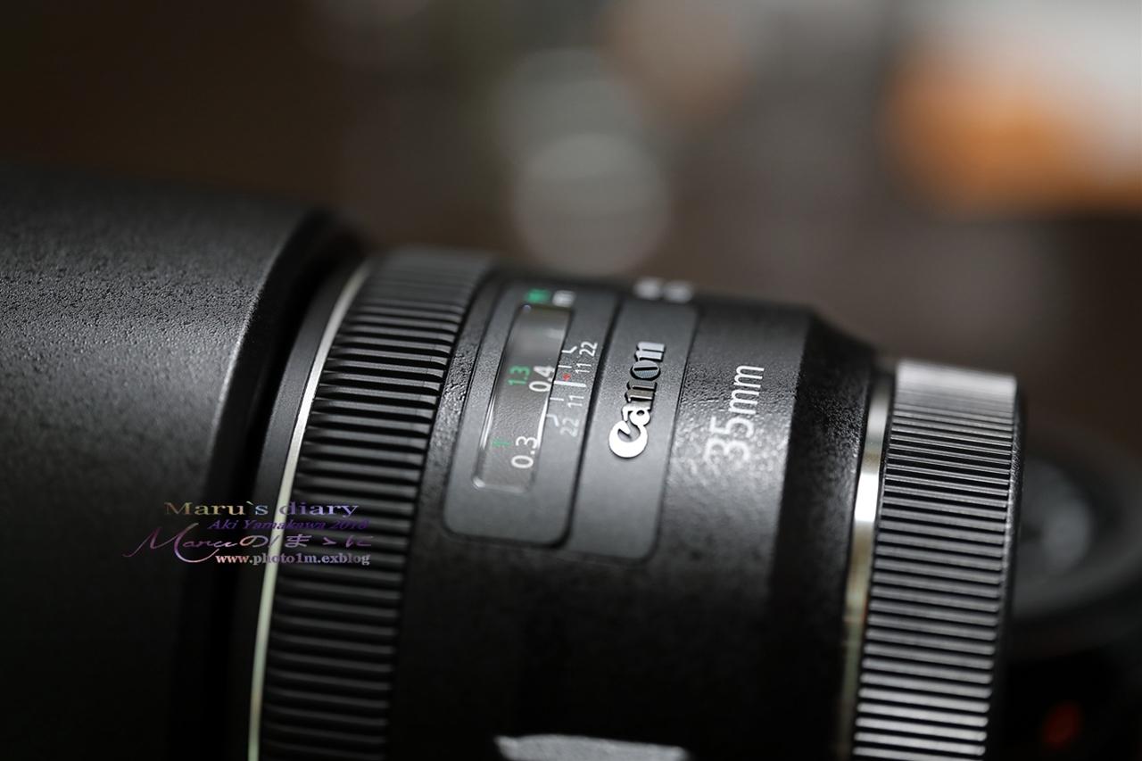 まゝに/SIGMA ART70mmDGf2.8Macro_d0342426_22030655.jpg