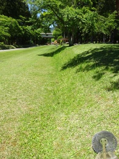 境内草刈り作業_c0111229_19593996.jpg