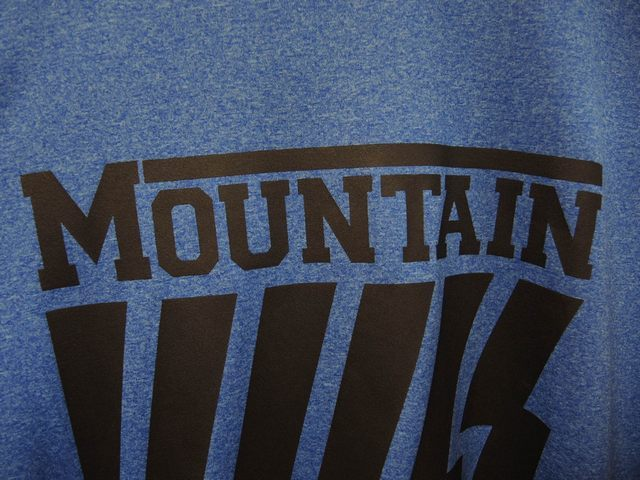 Mountain Sleeveless T_b0316864_14363816.jpg