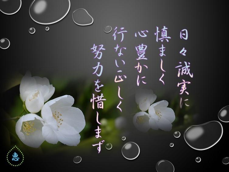 f0214467_10543477.jpg