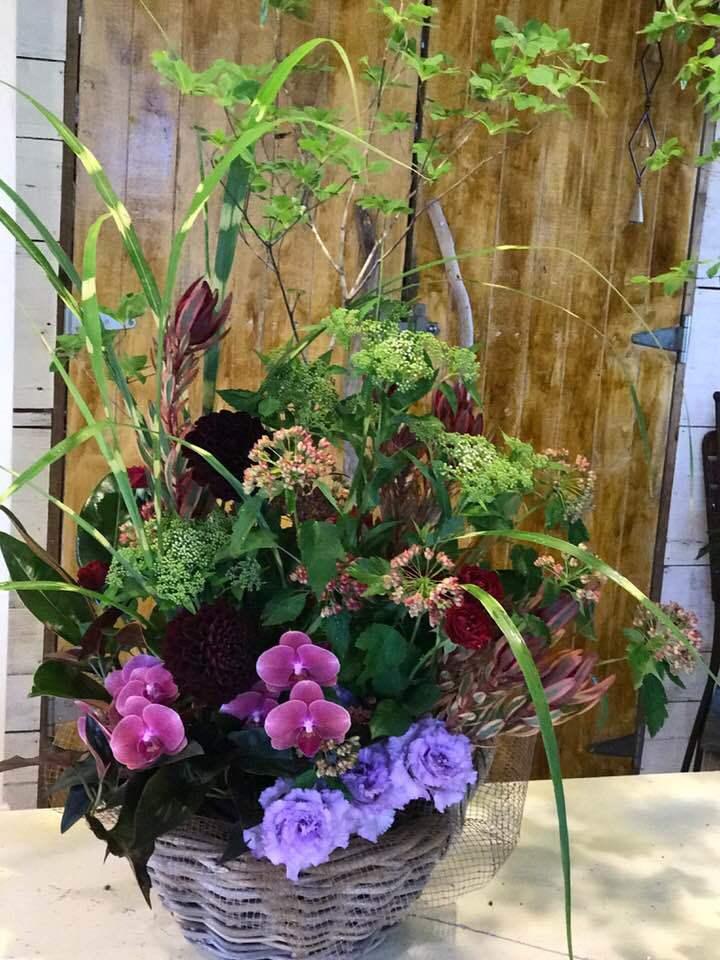 田んぼの中の花屋・・・アナーセンの一コマ・・_b0137969_07114760.jpg