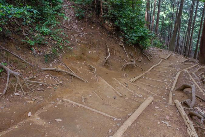日和田山への初めての山道_b0010915_11300557.jpg