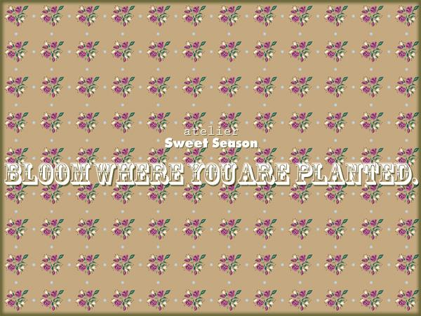 f0237141_16285386.jpg