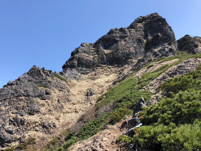 阿弥陀岳 南稜&中央稜 180527 シナノコザクラとホテイラン_e0338862_18154594.jpg