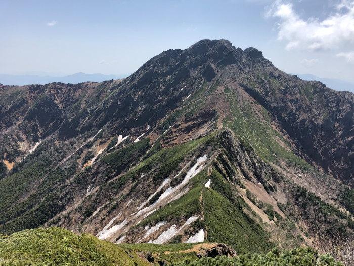 阿弥陀岳 南稜&中央稜 180527 シナノコザクラとホテイラン_e0338862_18420842.jpg
