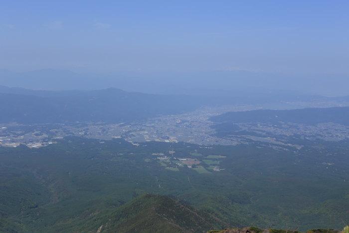 阿弥陀岳 南稜&中央稜 180527 シナノコザクラとホテイラン_e0338862_18445888.jpg