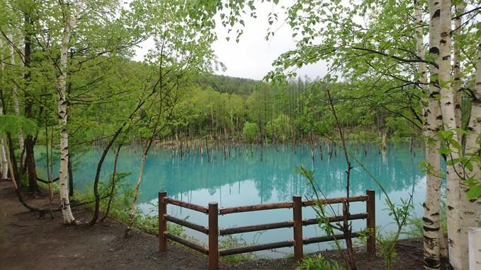 青い池_b0106766_2372039.jpg