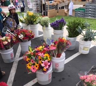 初夏のファーマーズマーケット_e0350971_13200750.jpg