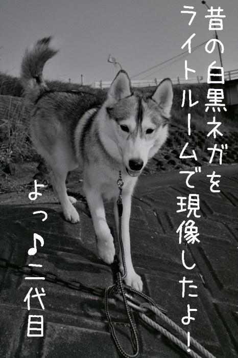 昔むかし (*^_^*)_c0049299_21192395.jpg