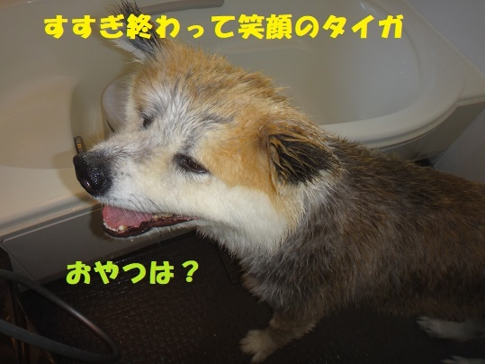 f0121712_08300073.jpg