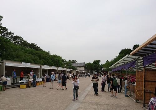 名古屋城での演奏、ありがとうございました!_f0373339_10555799.jpg