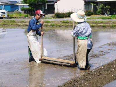 七城米 長尾農園 数量限定で販売中!平成30年度の米作りもスタート!苗床作りを現地取材!_a0254656_17284126.jpg