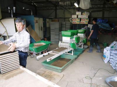 七城米 長尾農園 数量限定で販売中!平成30年度の米作りもスタート!苗床作りを現地取材!_a0254656_17353001.jpg