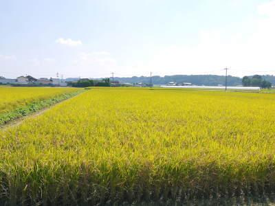 七城米 長尾農園 数量限定で販売中!平成30年度の米作りもスタート!苗床作りを現地取材!_a0254656_17555270.jpg