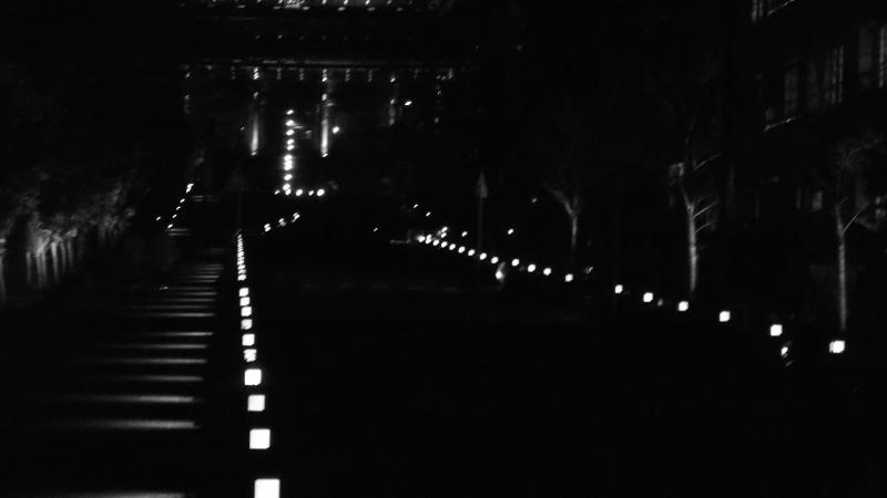 京都物語 鴨川界隈_a0355356_09411987.jpg
