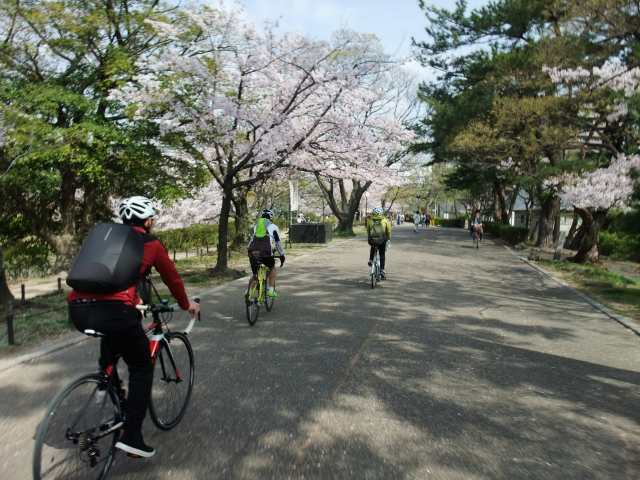桜・お花見&パン屋さん巡りライド_d0174462_18483147.jpg
