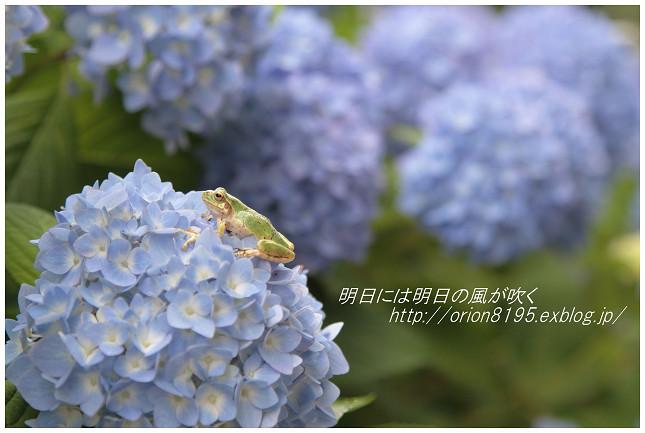 f0361079_21243456.jpg