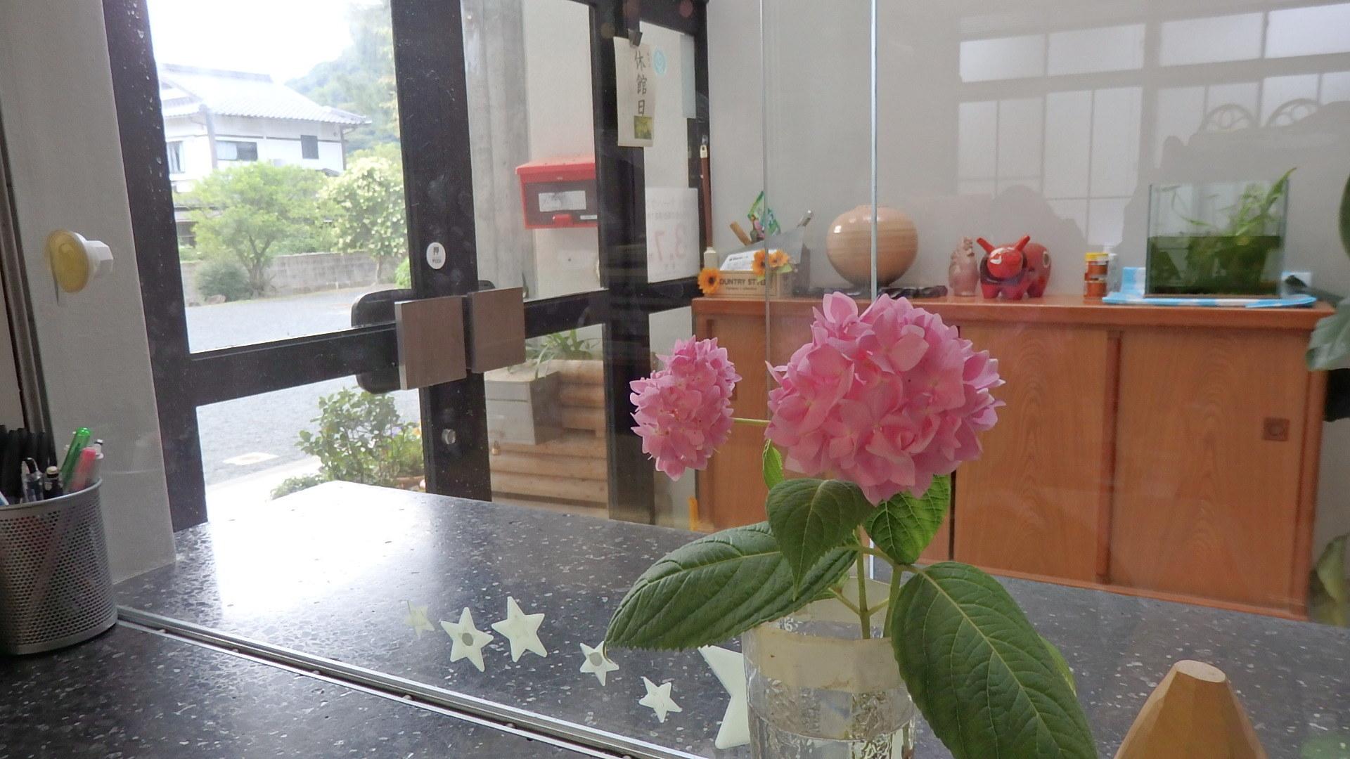 お花はココロのビタミン(^o^)_b0239402_18194126.jpg