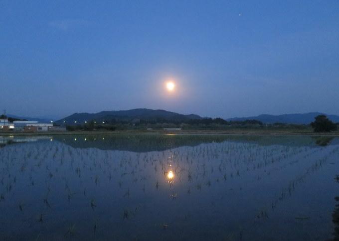 月夜_a0214206_20311624.jpg