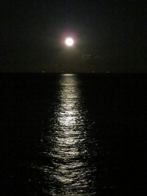 満月瞑想とヨガ☆_f0372313_22542050.jpg