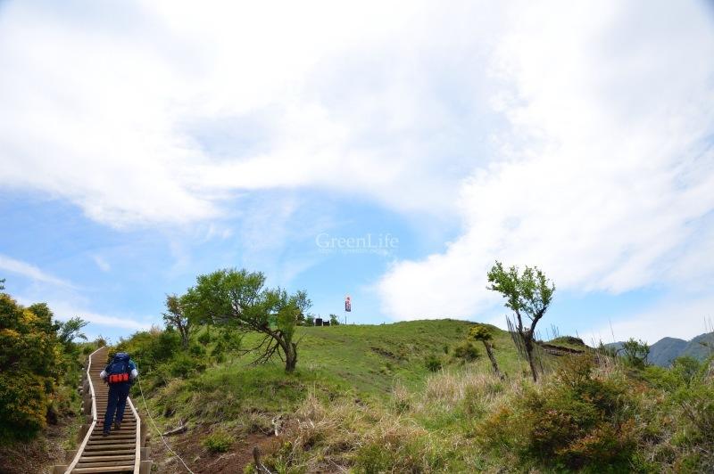 新緑の丹沢へ_f0321522_10531402.jpg