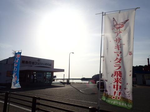 アサギマダラ   in  姫島_d0285540_05242035.jpg