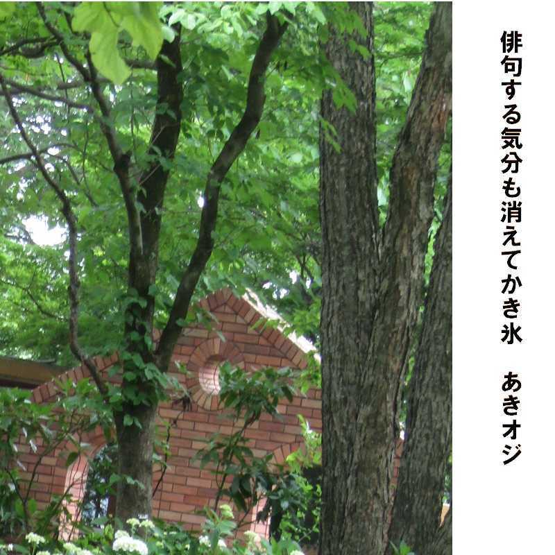f0117041_16294103.jpg