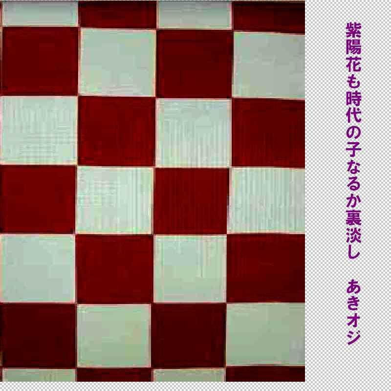 f0117041_16493574.jpg