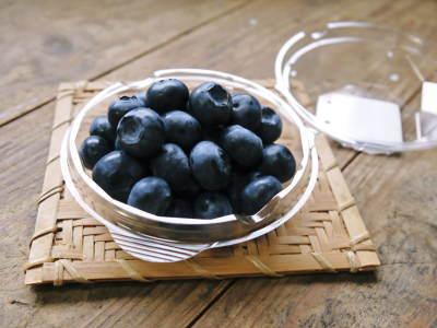 無農薬フレッシュブルーベリー 平成30年度の先行予約受付をスタート!今年も美味しく実りました!_a0254656_18145733.jpg