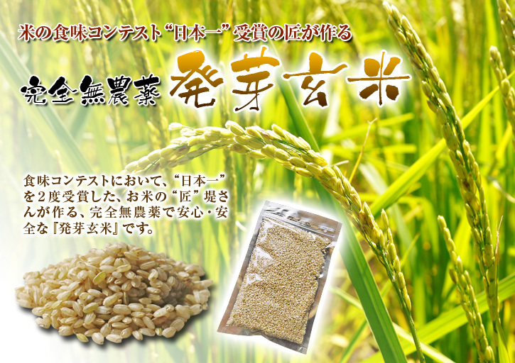 無農薬栽培の発芽玄米、雑穀米、米粉大好評発売中!「健康農園」さんの令和元年度の米作り!苗床の様子!_a0254656_17271569.jpg