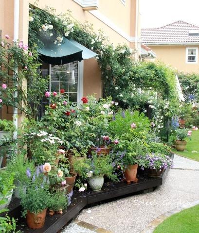 ◆素敵なお庭訪問・・・再びSさんのお庭3 & Rochetさんのお庭3_e0154682_22255486.jpg