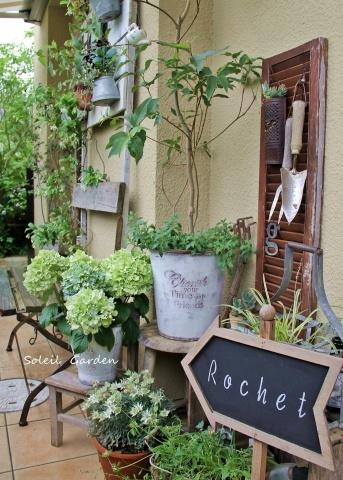 ◆素敵なお庭訪問・・・再びSさんのお庭3 & Rochetさんのお庭3_e0154682_22490369.jpg