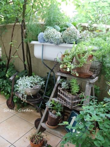 ◆素敵なお庭訪問・・・再びSさんのお庭3 & Rochetさんのお庭3_e0154682_22590436.jpg