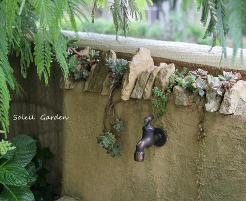 ◆素敵なお庭訪問・・・再びSさんのお庭3 & Rochetさんのお庭3_e0154682_23023960.jpg