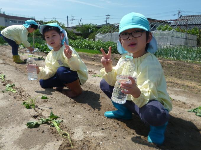 楽しかった!~イチゴ狩り 芋苗植え~_f0195982_16244528.jpg
